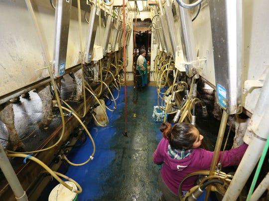 Dana Haupt, left, and Ana Noria of Clover View Dairy