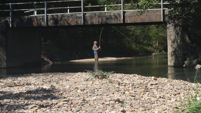 Chris DeLong fishes on Trammel Creek. The Allen County stream is one of 15 waters across the state that will be managed as seasonal catch-and-release for trout beginning Oct. 1.
