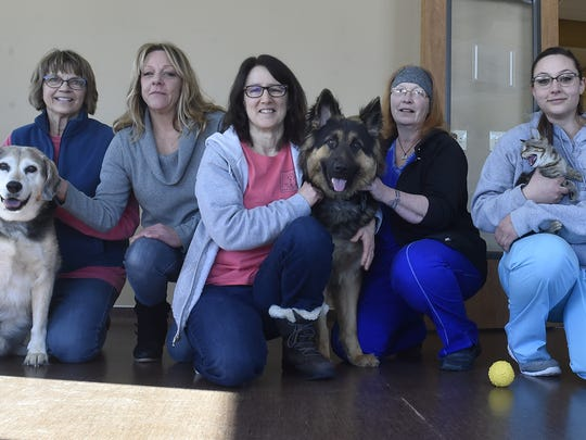 The Door County Campus of the Wisconsin Humane Society employees pose with retiring executive director Carol Boudreau, third from left, on her last day on Feb. 9, 2018. They include, from left, Rachel Asher, Thea Massey, Carol Boudreau, Debbie Barnes, Khia Massey and Peggy O'Hern. The pets, from left, Rabi, Sarge, Alex (cat) and Finly. Rabi and Alex are available for adoption.