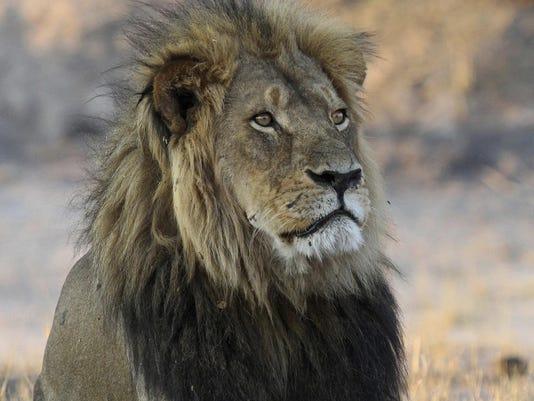 Zimbabwe Cecil's Son