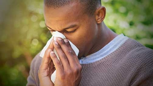 When you inhale allergens – such as pollen, mold spores or animal dander – your body responds by releasing histamines.