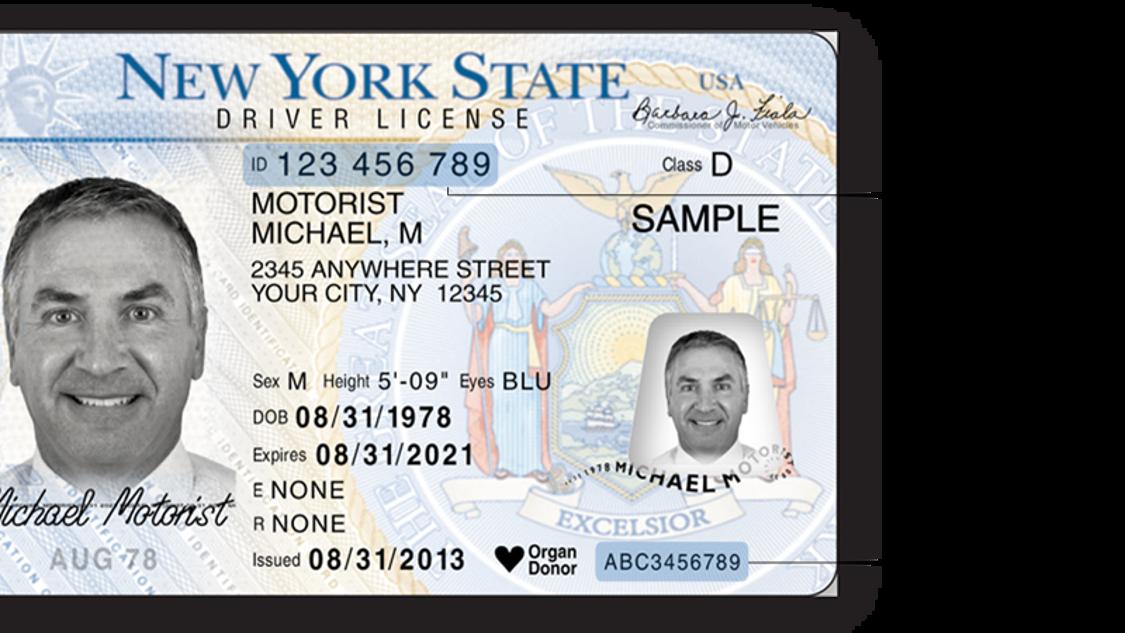ny allows printathome temporary driver licenses