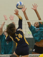 South Lyon's Larissa Dean (center) spikes the ball