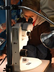 CHUCK SNYDER/Special to the News Journal Max Griffin, 4, from Lewes looks through a microscope at baby horseshoe crabs. Max Griffin 4 years old from Lewes looks thru a microscope at baby horseshoe crabs as Coast Day was held at the University of Delaware College of Earth, Ocean & Environment in Lewes on Sunday October 5th with great weather and a large crowd on hand to see the many exhibits and boats on display along with education sessions.