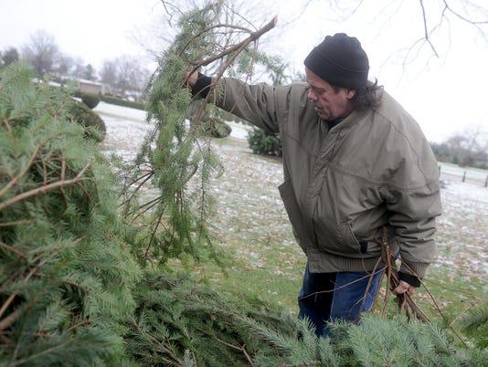 CHRISTMAS TREE VETS