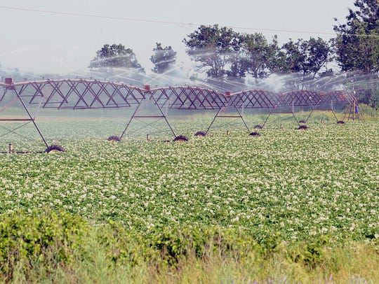 A large irrigation system sprays water on a field along