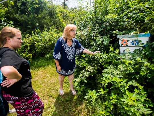 Kathy Jones looks at a beehive in her backyard with