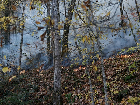 "A fire burns along Quarry Creek off State Highway 165, 2 miles from State Highway 68 in Monroe County on Wednesday, Nov. 16, 2016. The fire, which is on the historic ""Trail of Tears"" corridor, covered approximately 50 acres."