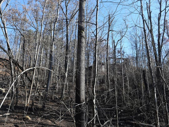 Properties damaged in the Cobbly Knob area after wildfires ran through the Pigeon Forge and Gatlinburg, Tenn. earlier in the week, Thursday, Dec. 1, 2016.