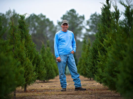 Frank Wadsworth stands next to christmas trees on his