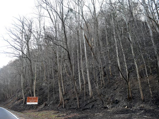 Fire damage along The Spur in Gatlinburg after wildfires