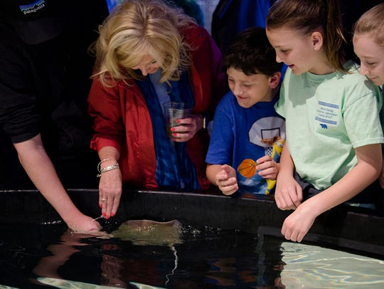 People pet stingrays at the opening of the Stingray