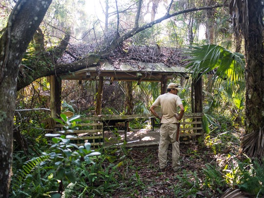 Alex Rodriguez checks out a hut on the property of the late conservationist Bob Gore in Golden Gate Estates on Sunday, Feb. 26, 2017. Collier County commissioners voted last week to buy the property with funds from the Conservation Collier trust.