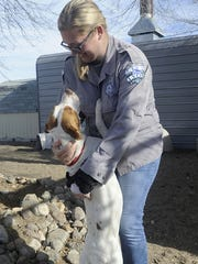 Animal Services Superintendent Nicole Cates receives a hug from a dog at the shelter.