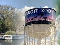 Christmas in July: Win Zoo Passes!
