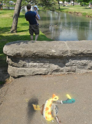 A man and his daughter watch ducklings swim in the pond at South Park near a chalk drawing of a duck wearing an inner tube Sunday, June 10, 2012, during the South Park Art Fair in Oshkosh.