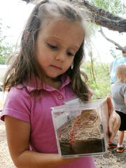 Emma Bounds looks at the insect habitat she created for some pill bugs she captured at River Bend Nature Center's Critter Camp in this file photograph. River Bend's Camp Discover Steam will be held 8:30 a.m. to noon, June 25 to 29, for ages 4 to 12. Cost is $90 members, $100 nonmembers.Registration required.