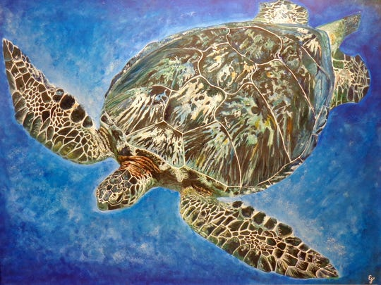"""Sea Turtle,"" drawing by Emma Jeanquart of Southern Door High School, part of the 44th Annual Salon of Door County High School Art opening April 21 at the Miller Art Museum."