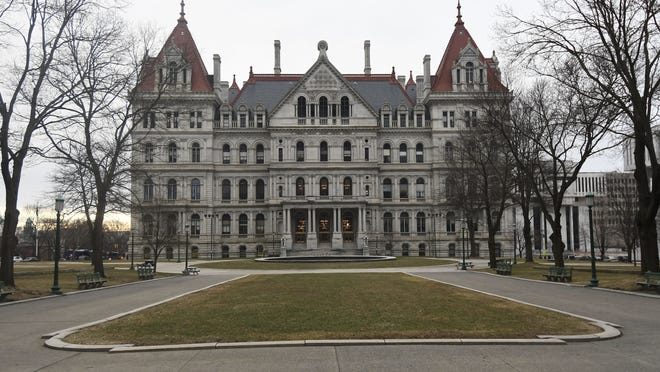 Several local candidates want to call the state Capitol in Albany their workplace in 2021.  {AP Photo/Hans Pennink, File}