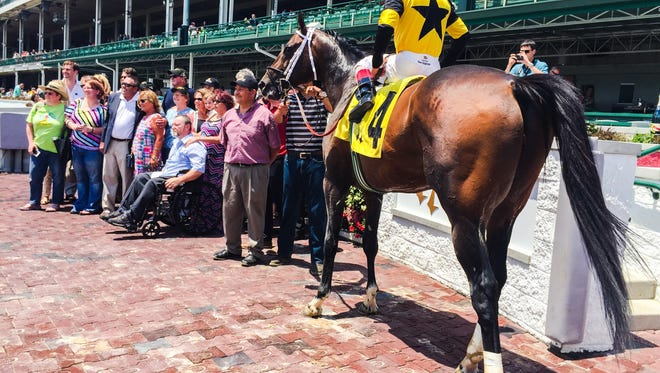 Commanding Curve in the Churchill Downs winners circle on Saturday.