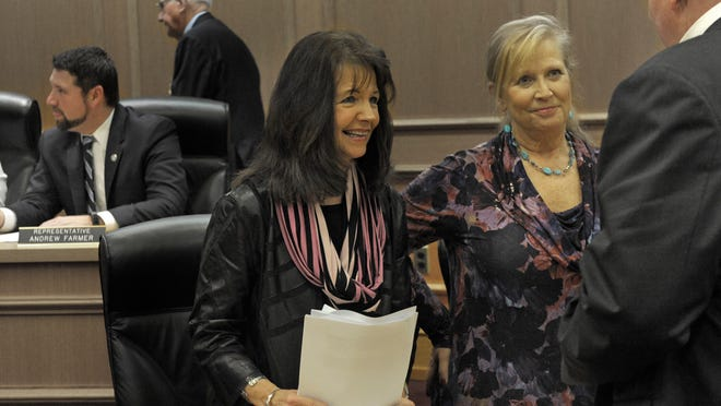 State Rep. Sheila Butt (left) and her sister Nancy Mitchell in a committee session recently at the Tennessee state capitol.