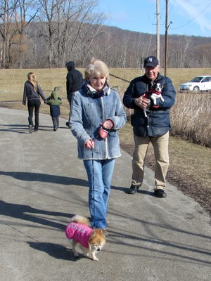 Gina and Dan Caputo, of Elmira, take advantage of a sunny day to walk their dogs Bitsy, foreground, and Squirt, at Eldridge Park on Monday.