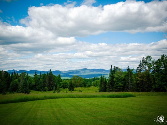 A view in Craftsbury