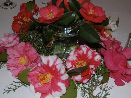 Camellia Club
