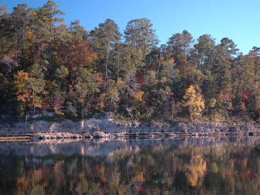 Rock Bluff at Torreya State Park, photo credit Harley Means.JPG