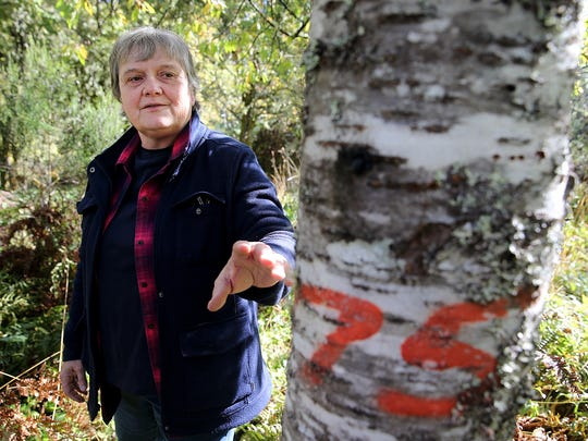 Terri Jones a Navy forester at Naval Base Kitsap-Bangor, stands in an orchard on the base. The orchards were planted by homesteaders. The fruit trees are marked and numbered.