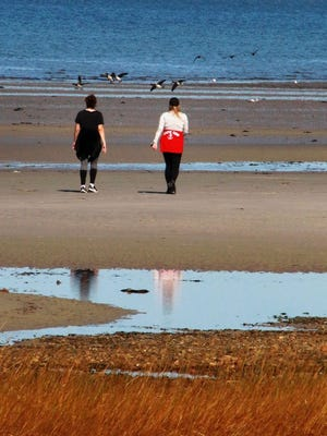 Walkers head out on the flats of Ellis Landing Beach. More mild temps are forecast for this weekend.
