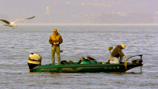 A recently completed multi-year study conducted by the state Department of Environmental Protection and the Fish and Boat Commission indicated that the most likely suspects in causing the mutations and disease in the smallmouth population are such chemicals, along with parasites, pathogens and herbicides used in agriculture.