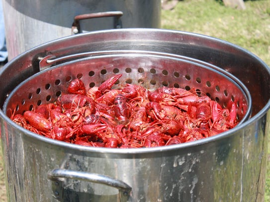 More than 1,000 pounds of crawfish will be available this weekend.