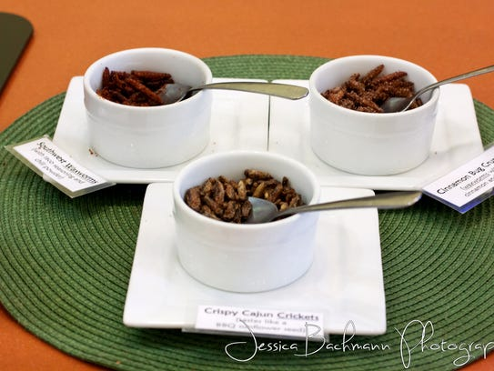 A variety of bug-based dishes.