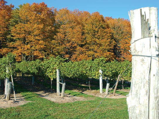 Three Lakes Winery produces 250,000 gallons of wine