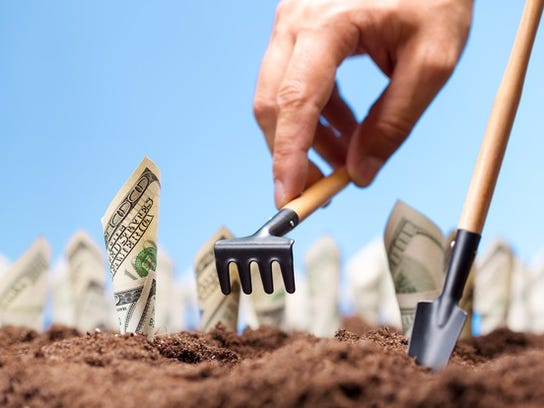 Planting hundred dollar bills in the ground.