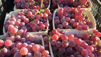 "Caradonna Farm's grapes are ""over the top"" -- you can get them at the Ridgewood Farmer's Market"