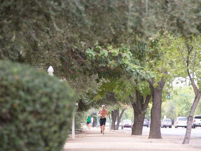 Chad LaRue runs on the Murphy Bridle Path on Central Ave. in Phoenix on Tuesday, July 15, 2014.