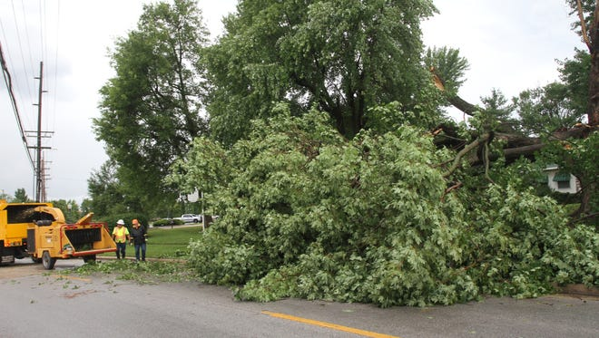 Tree down at Cox Road and Butterfield St.