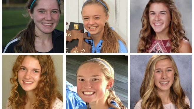 A look at the Lansing State Journal girls cross country Dream Team.