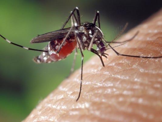 West Nile virus detected