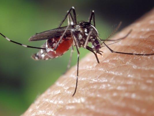 636380704401800366-MJSBrd-07-28-2017-Farmer-1-A003--2017-07-27-IMG-mosquito-1-1-RAJ1IEC7-L1069640190-IMG-mosquito-1-1-RAJ1IEC7.jpg