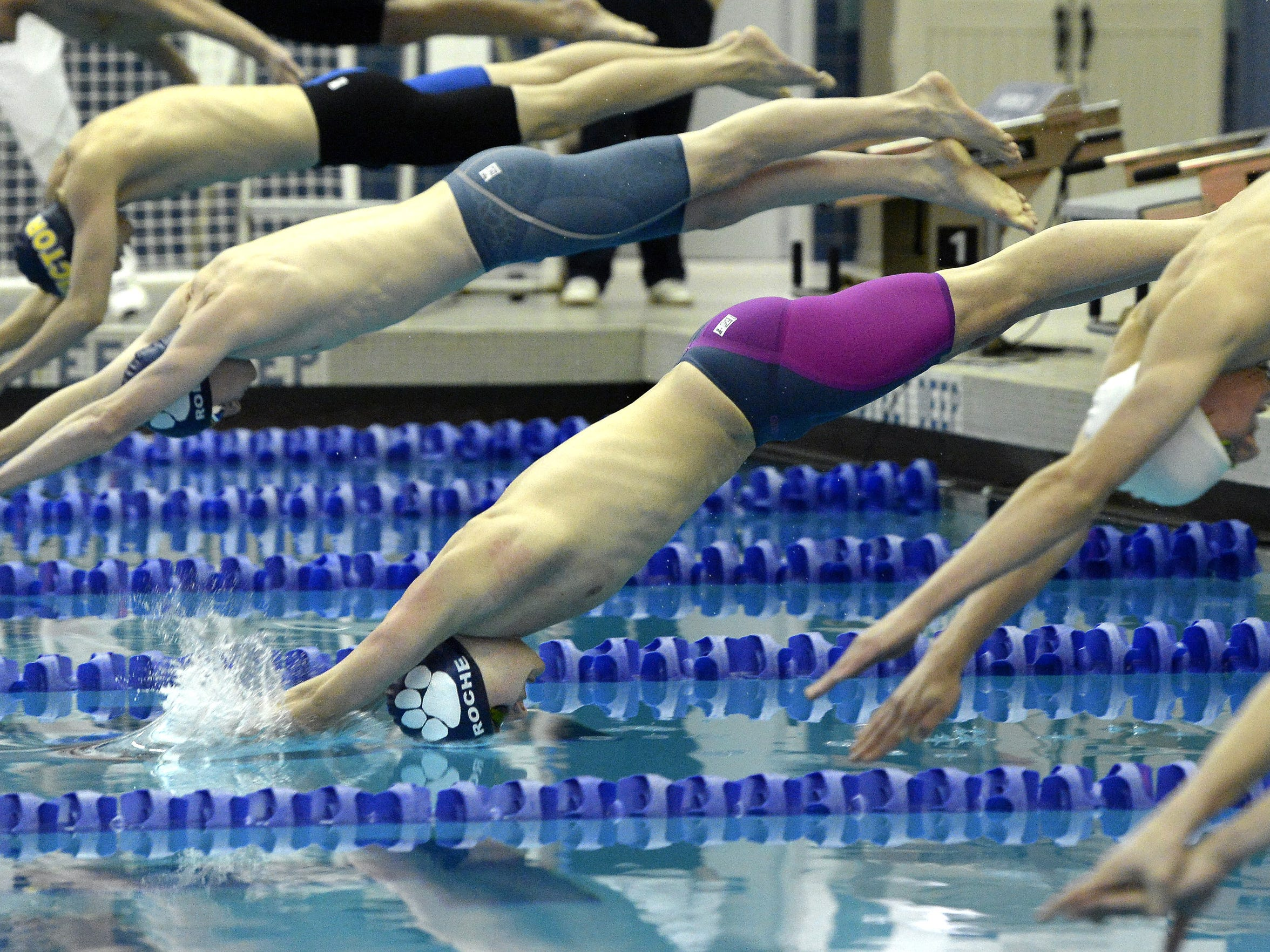 Pittsford's Sam Roche enters the water on his way to winning the final of the 100 yard freestyle with a meet and school record time of 46.13 during Section V Class A Swimming Championships at the Webster Aquatic Center on Friday, Feb. 16, 2018.