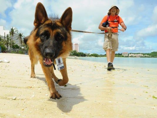 636172713297760288-Rescue-Dog-09.JPG