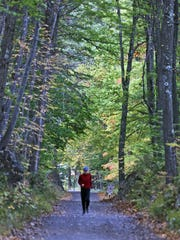 A runner on the trails at Rockefeller State Park Preserve,