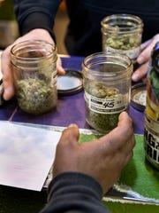 A customer shops varieties of medical marijuana at