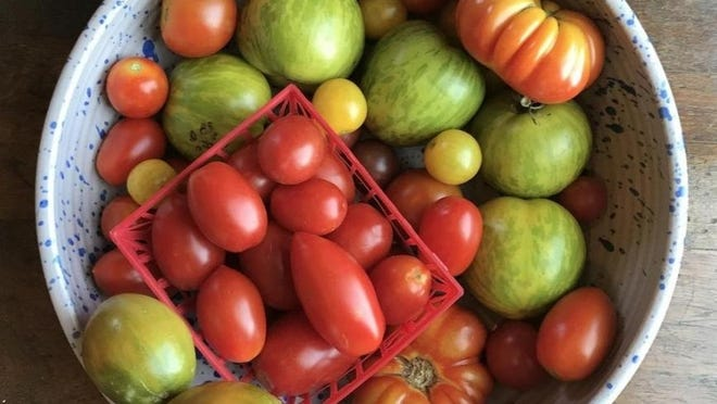 Pick out a variety of tomatoes at the farmers market or store. Each kind has a slightly different taste, texture and smell.
