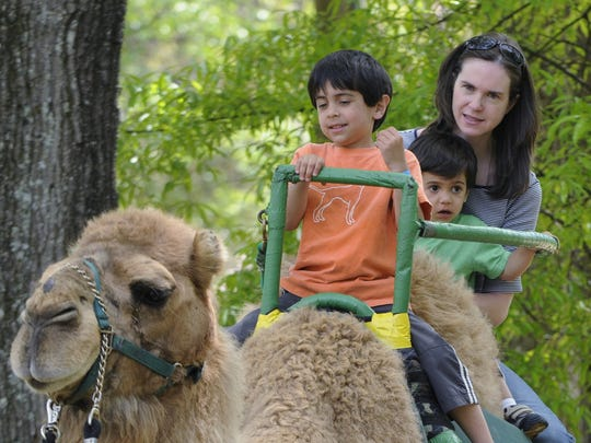 Join the Montgomery Zoo for Zoo Weekend 9 a.m.-6 p.m. Saturday and Sunday. Enjoy a festive environment with live entertainment, games, rides, concessions and animals from around the world.