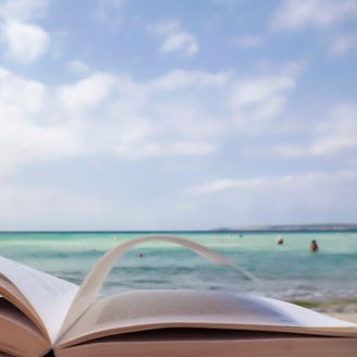 Summer 2018 beach reads:  11 great books on investing, work and technology