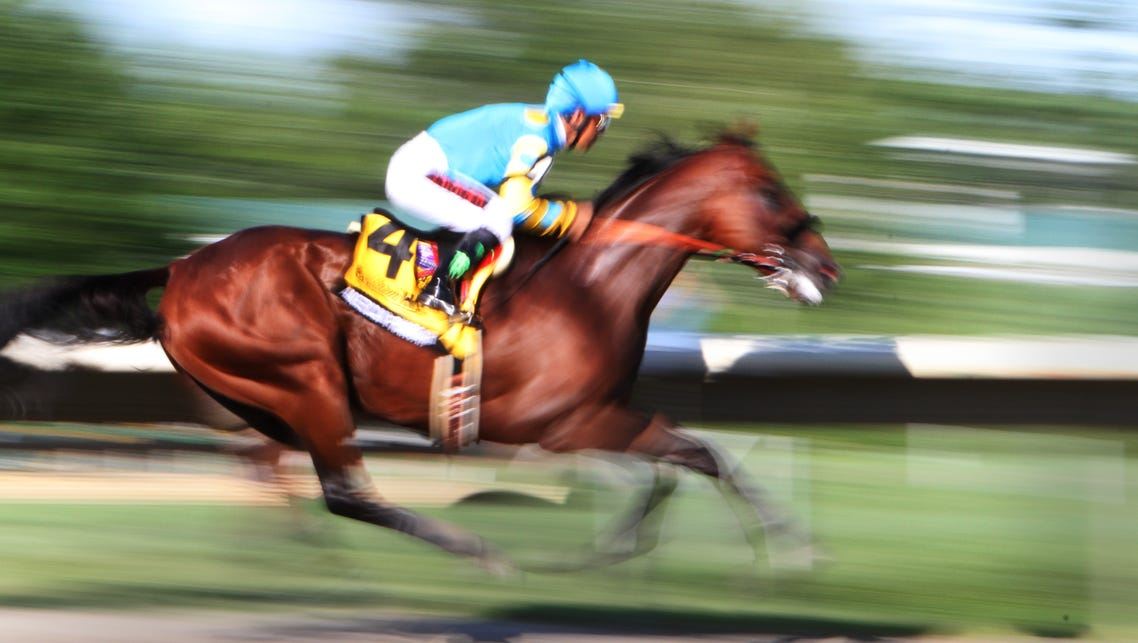 Oceanport NJ ,  08/02/2015  American Pharoah comes
